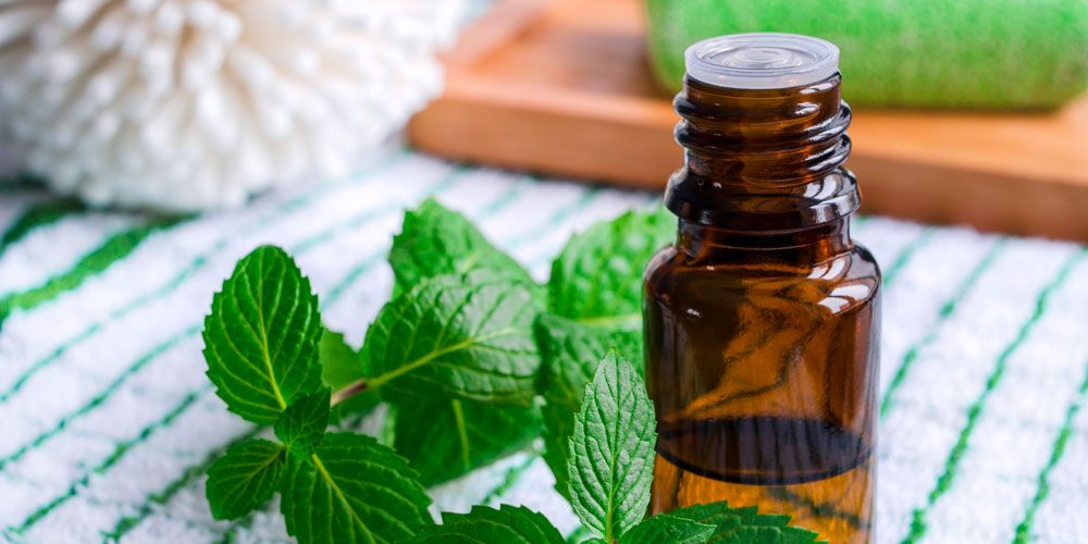 6 Best Essential Oils To Help You Relax And Enjoy Your Summer Travels