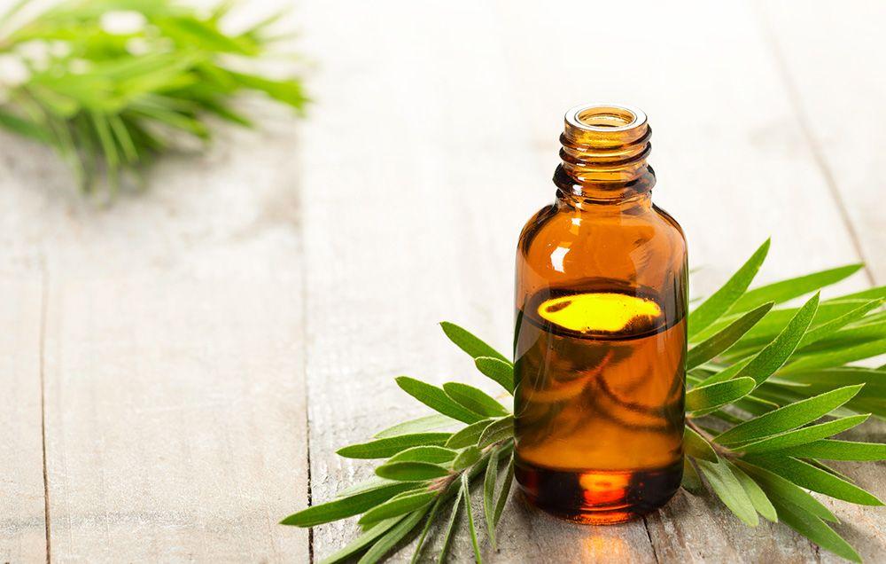 13 Ways To Use Tea Tree Essential Oil