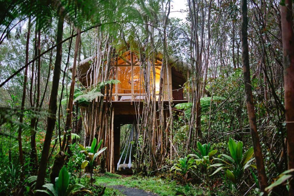 全球最美的十間「樹屋」住宿,將叢林的靜謐和星空的唯美盡收眼底!