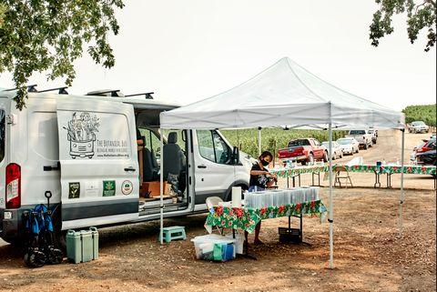 botanical bus set up