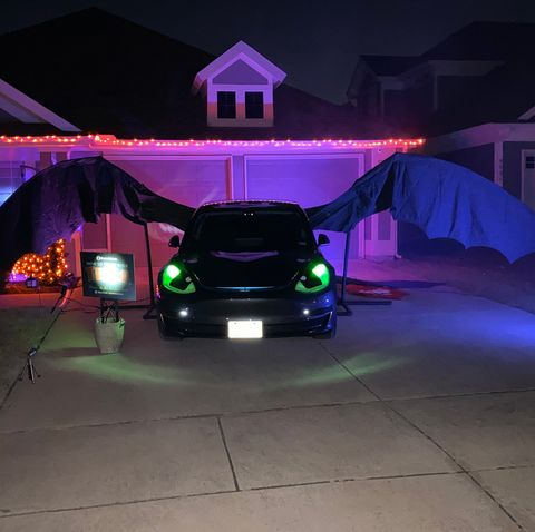 toothless trunk or treat