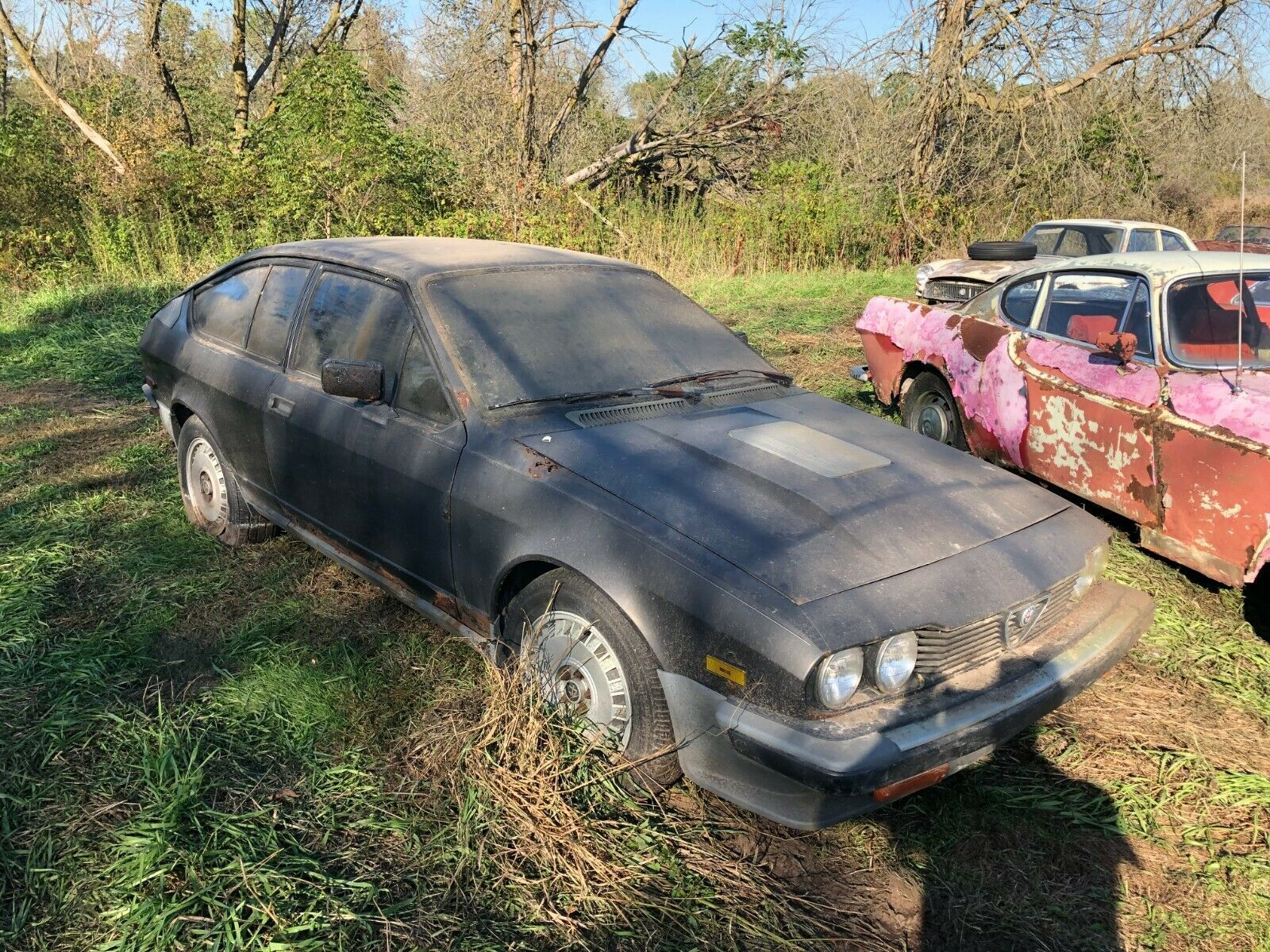 Someone Please Save this Barn Find Alfa Romeo GTV-6 From a Rusty Grave