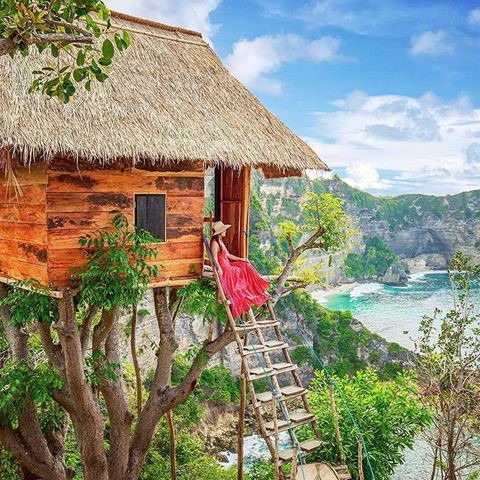 Natural landscape, House, Building, Roof, Tree, Jungle, Vacation, Home, Cottage, Village,