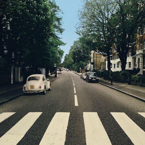 White, Photograph, Road, Tree, Snapshot, Line, Asphalt, Infrastructure, Street, Photography,