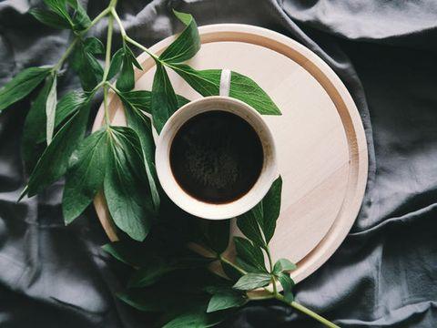 Green, Leaf, Plant, Tree, Flower, Herb,