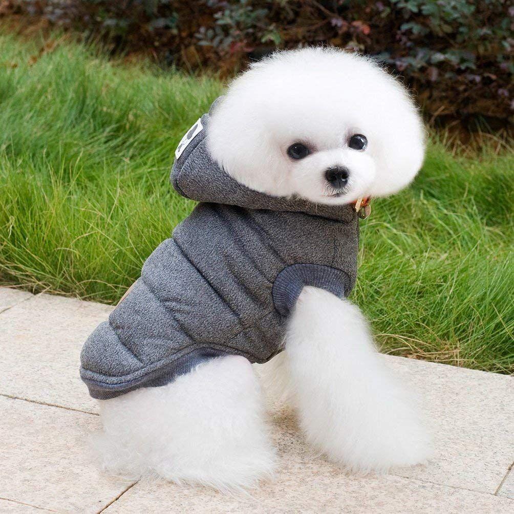 Perro llevando un abrigo con capucha de color gris