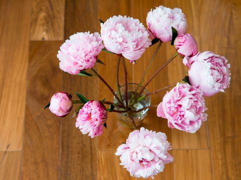 Wood, Petal, Flower, Hardwood, Pink, Wood stain, Artificial flower, Wood flooring, Flower Arranging, Cut flowers,