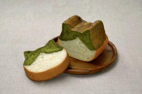 綠色和白色的貓咪吐司