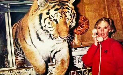 actress and activist tippi hedren at home in acton, california, 1994