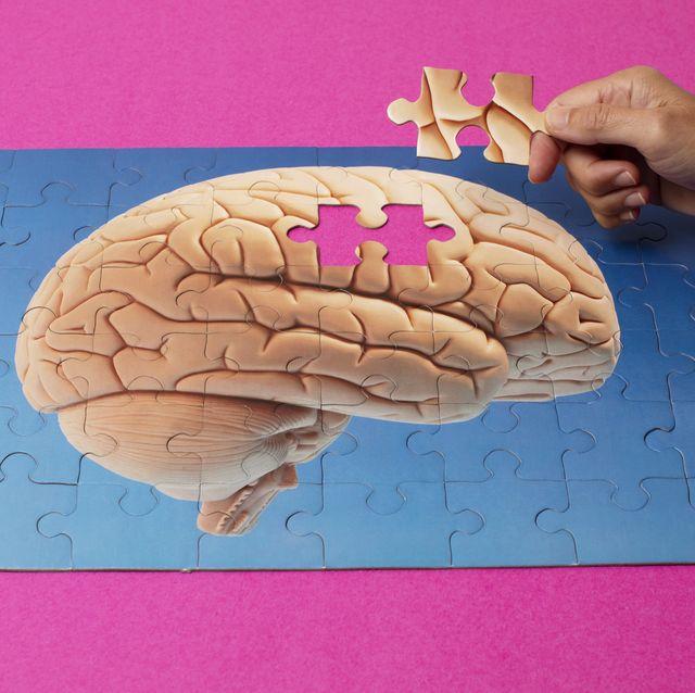adding last piece of human brain puzzle