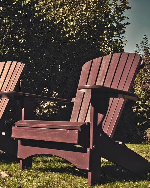 Outdoor furniture, Furniture, Chair, Outdoor bench, Outdoor table, Tree, Bench, Armrest, Leisure, Table,