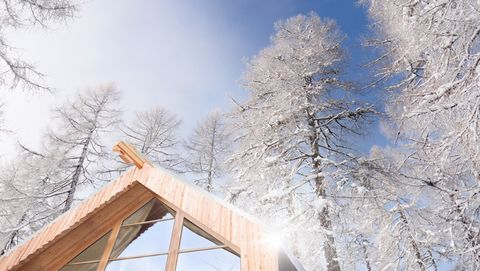 Winter, Snow, Freezing, Tree, Sky, Roof, Frost, Ice, Branch, House,