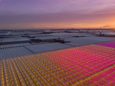 aerial view of a modern agricultural greenhouse in the netherlands