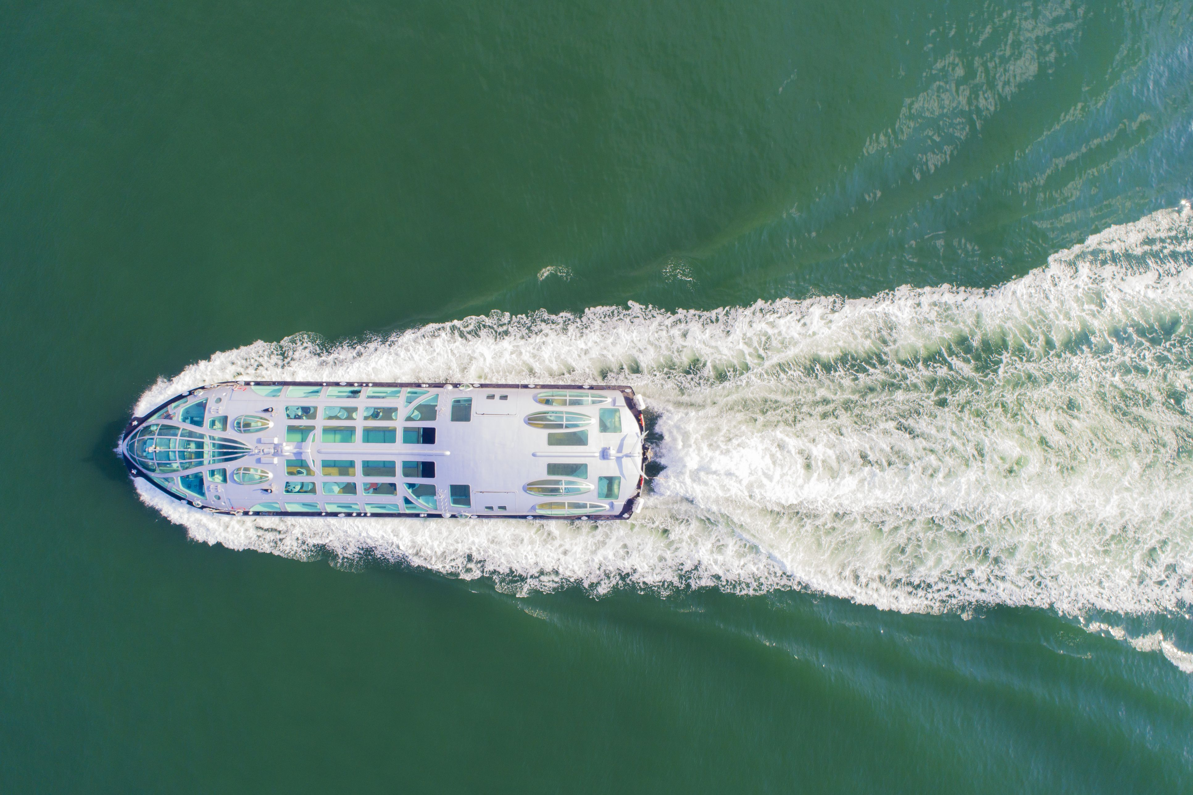 Aerial view of cruise ship on sea.