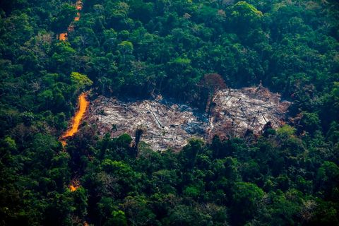 TOPSHOT-BRAZIL-DEFORESTATION-AMAZON