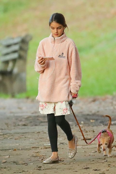 Dog, Canidae, Dog walking, Leash, Walking, Photography, Companion dog, Carnivore,