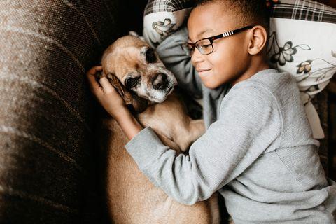 本記事では、子どもがいる家庭でも飼いやすいペットをご紹介します。おうち時間が増えた今、私たちに癒しと笑顔をもたらしてくれるペットを飼いたいと思うようになった家庭も多いのでは? 子どもがいる家庭の場合、子どもと動物の相性も重要になってきますよね。家庭に合ったペットを見つけられれば、かけがえのない時間となるはず。