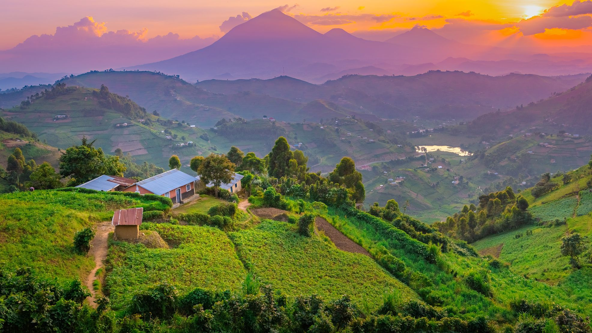 Uganda: Why you need to visit the garden of Africa in 2020