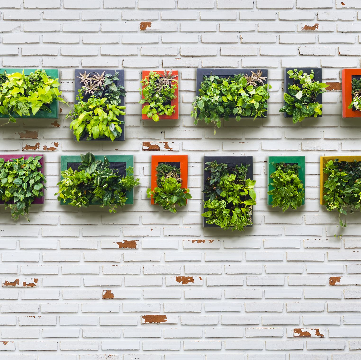 30  Creative Ways to Plant a Vertical Garden - How To Make a ...