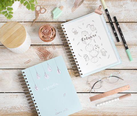 Agenda escolar ilustrada 2019/20