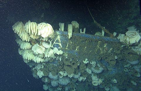American Heritage Shipwreck santa monica