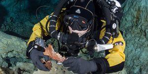underwater cave bone find