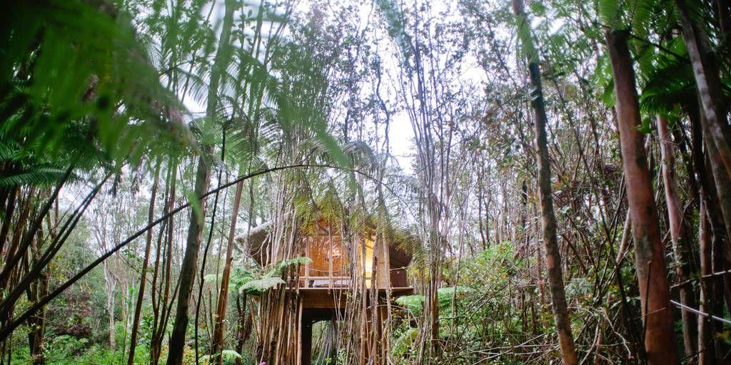 Hotspots Hawaï - Deze luxe Airbnb staat middenin de jungle in Hawaï