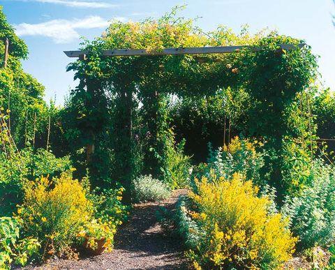 jardines de exteriores