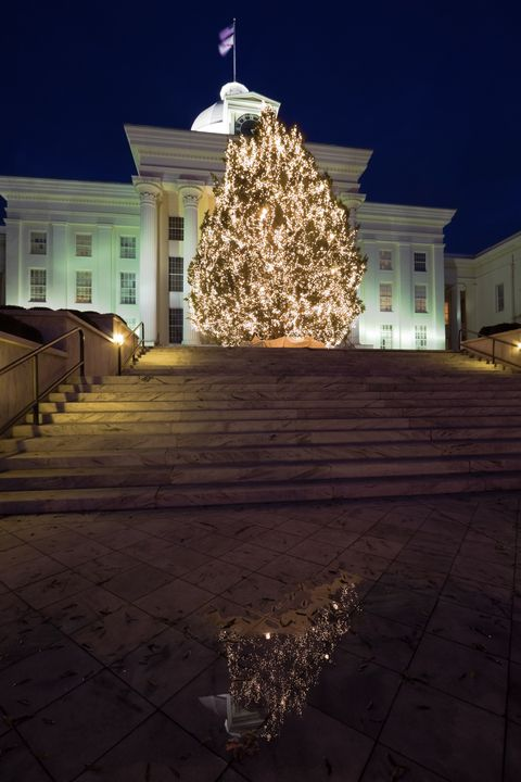 Christmas Tree Outside.Iconic Christmas Trees In Every State Best Christmas Trees