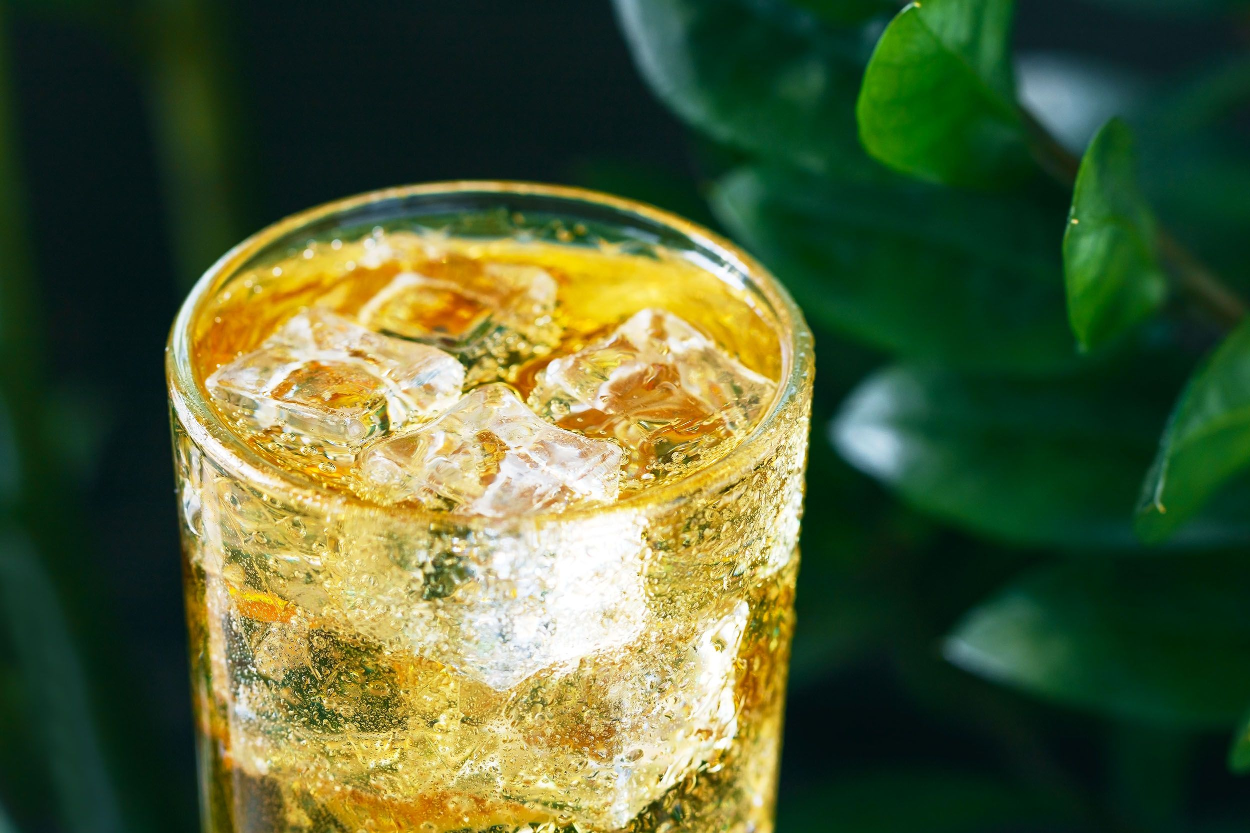 How to Make a Scotch and Soda