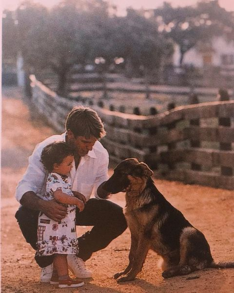Dog, Mammal, Canidae, Dog breed, Carnivore, Sporting Group, Guard dog, Child,