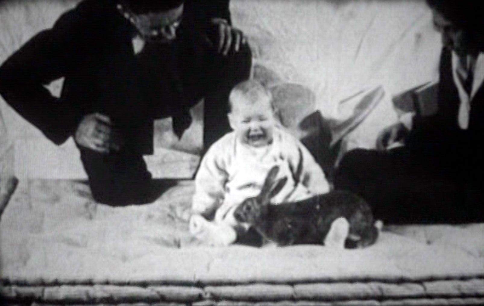 Pazze storie di psicologi: il piccolo Albert, la cavia umana che venne terrorizzata per dimostrare una teoria