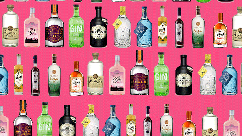 Aldi has launched loads of new gins to its shelves for Christmas