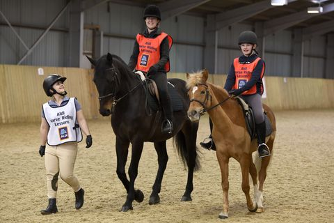 Aldi Launches Discounted Horse Riding Lessons With Prices