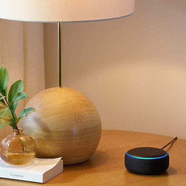 echo dot and light bulb combo