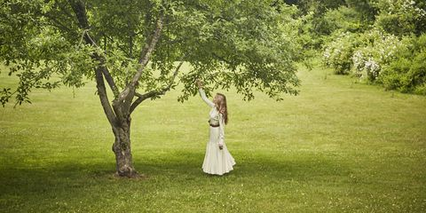 People in nature, Photograph, Green, Tree, Nature, Sky, Bride, Dress, Grass, Natural environment,