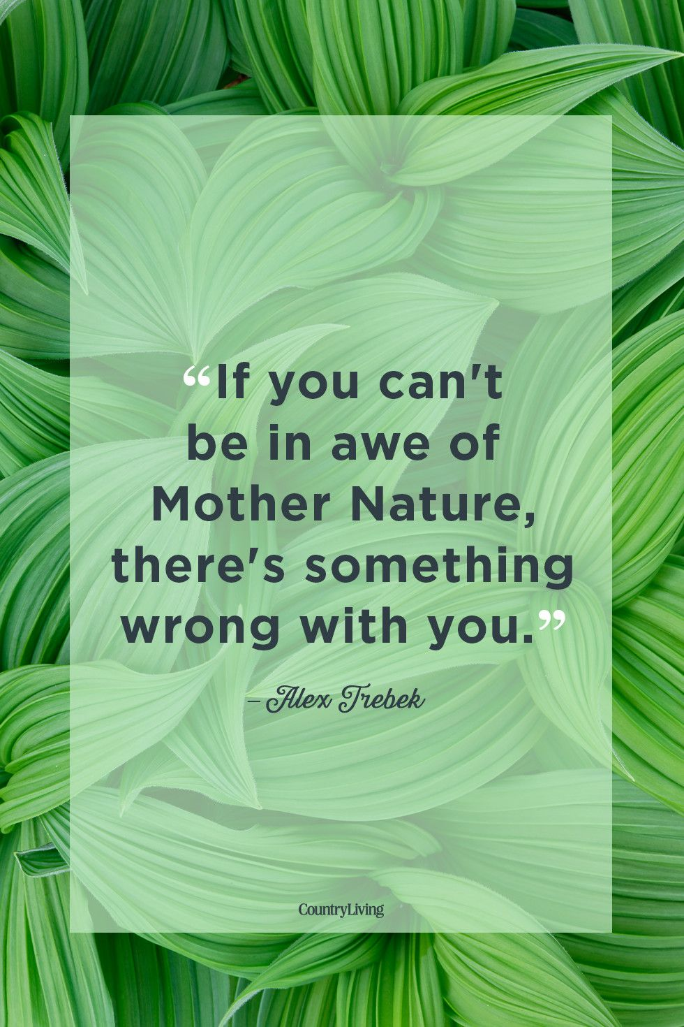 b31d72ad67c 35 Best Nature Quotes - Inspirational Sayings About Nature