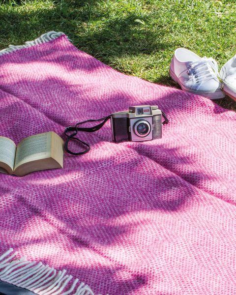 Pícnic en el parque