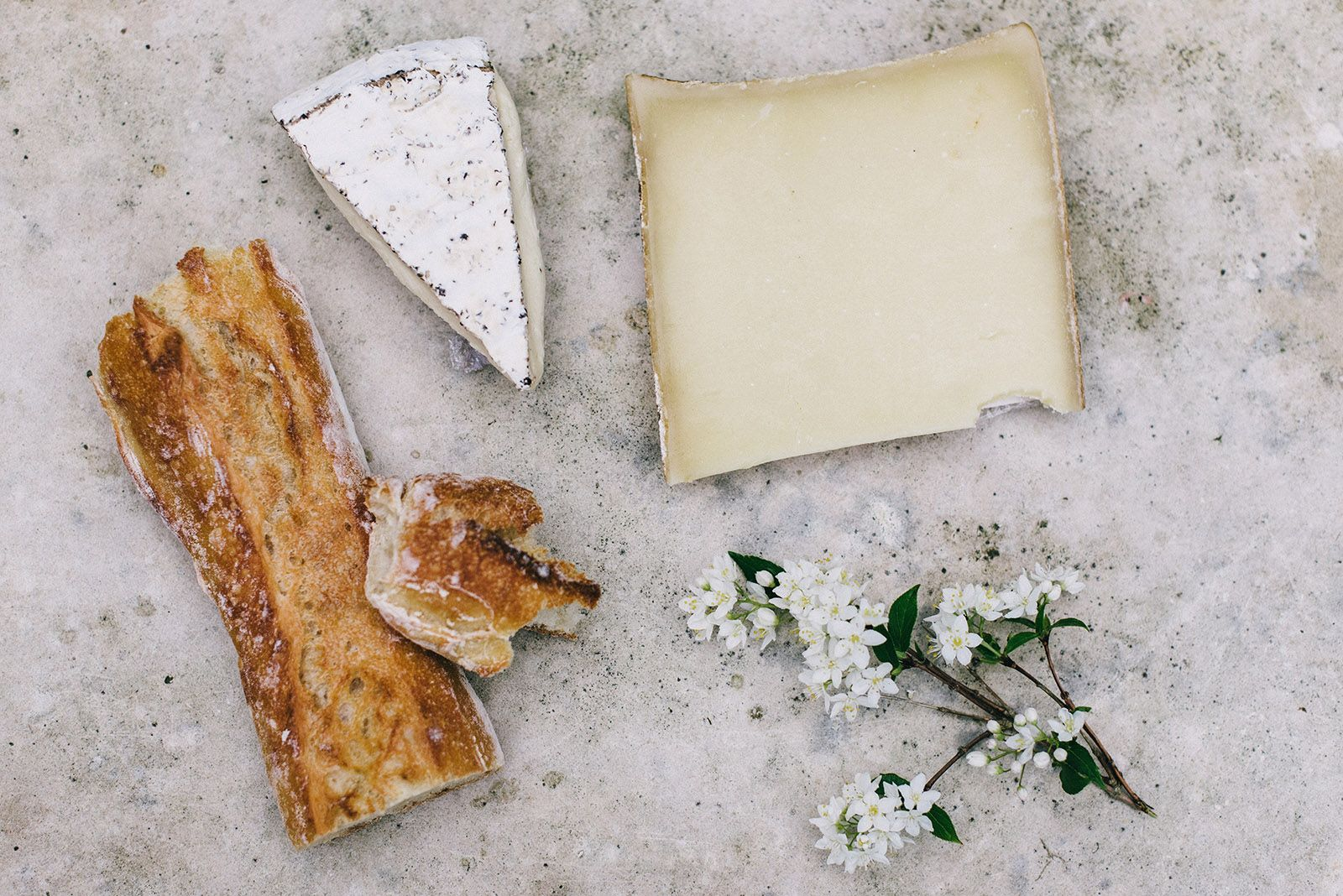 Toast ricette con i formaggi più buoni del mondo