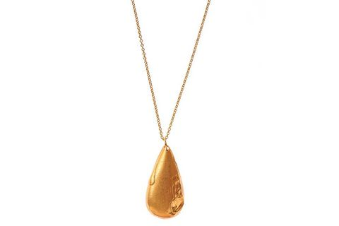 Pendant, Necklace, Jewellery, Fashion accessory, Locket, Chain, Gold,