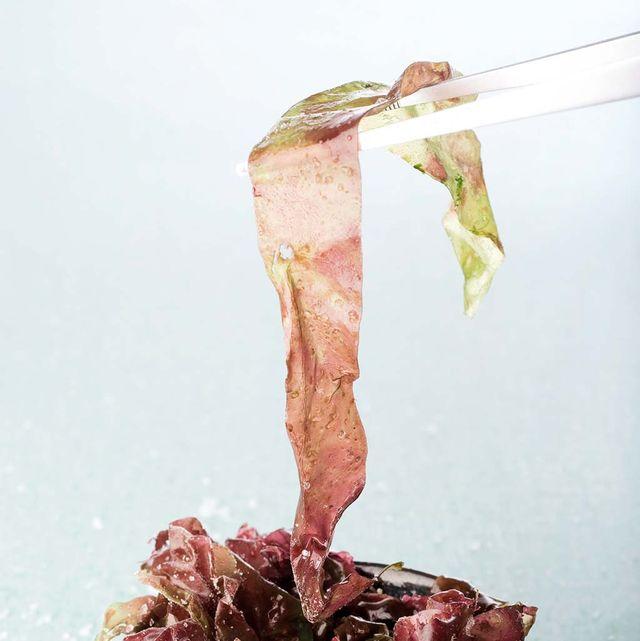 Algas:Alimentos nutritivos