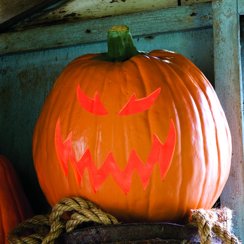 hobgoblin pumpkin