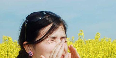 allergy-culprits.jpg