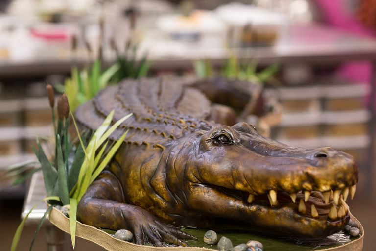 You have to see this insanely realistic five foot alligator wedding cake courtesy of food network forumfinder Choice Image