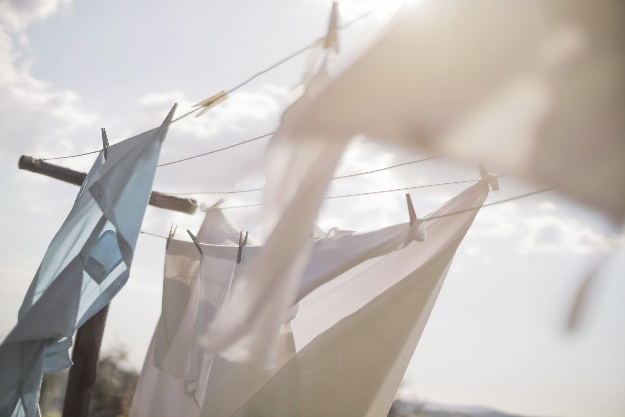 Palline Raccogli Peli Lavatrice.Perche Usare Carta Stagnola Nella Lavatrice E Una Bomba Per I Vestiti