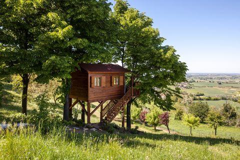 cabaña rústica en medio del campo en airbnb