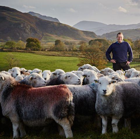 james rebanks herdy shepherd
