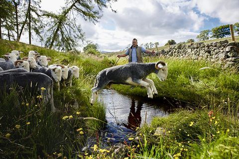 Country Living photo exhibition
