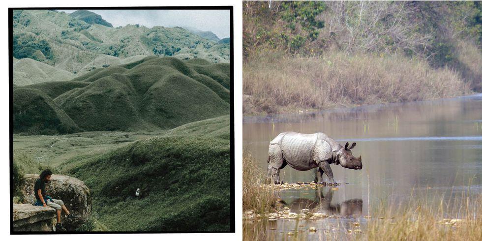 [Image: amazon-india2-1540209250.jpg?crop=1xw:1x...size=480:*]