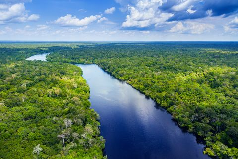 Seven natural wonders of the world: Amazon River